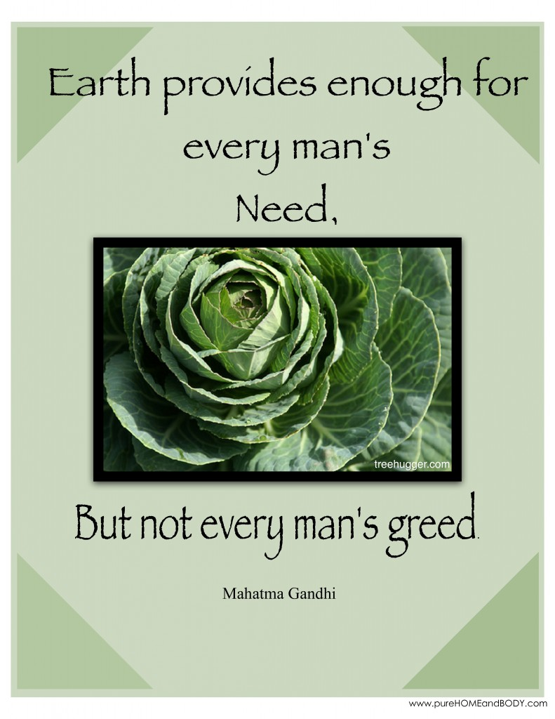 Earth quote #5