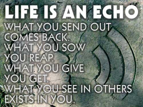 Echo quote #2
