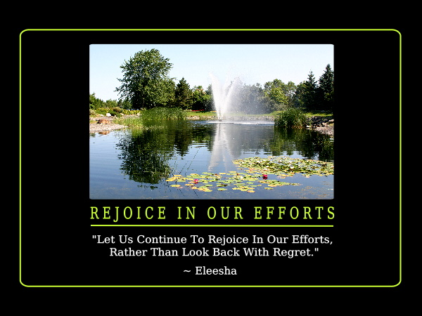 Efforts quote #3