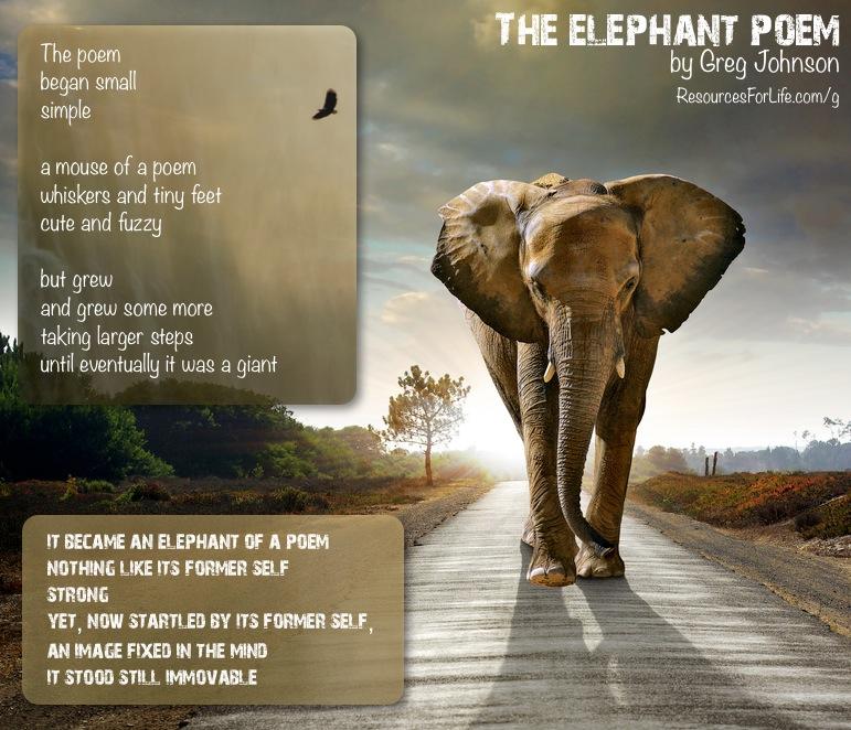 Elephant quote #2