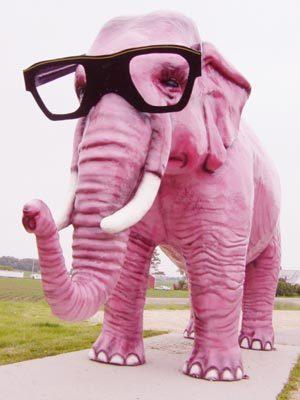 Elephant quote #4