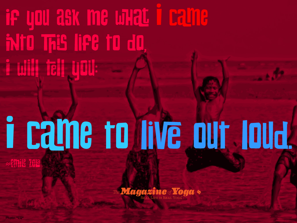 Emile Zola's quote