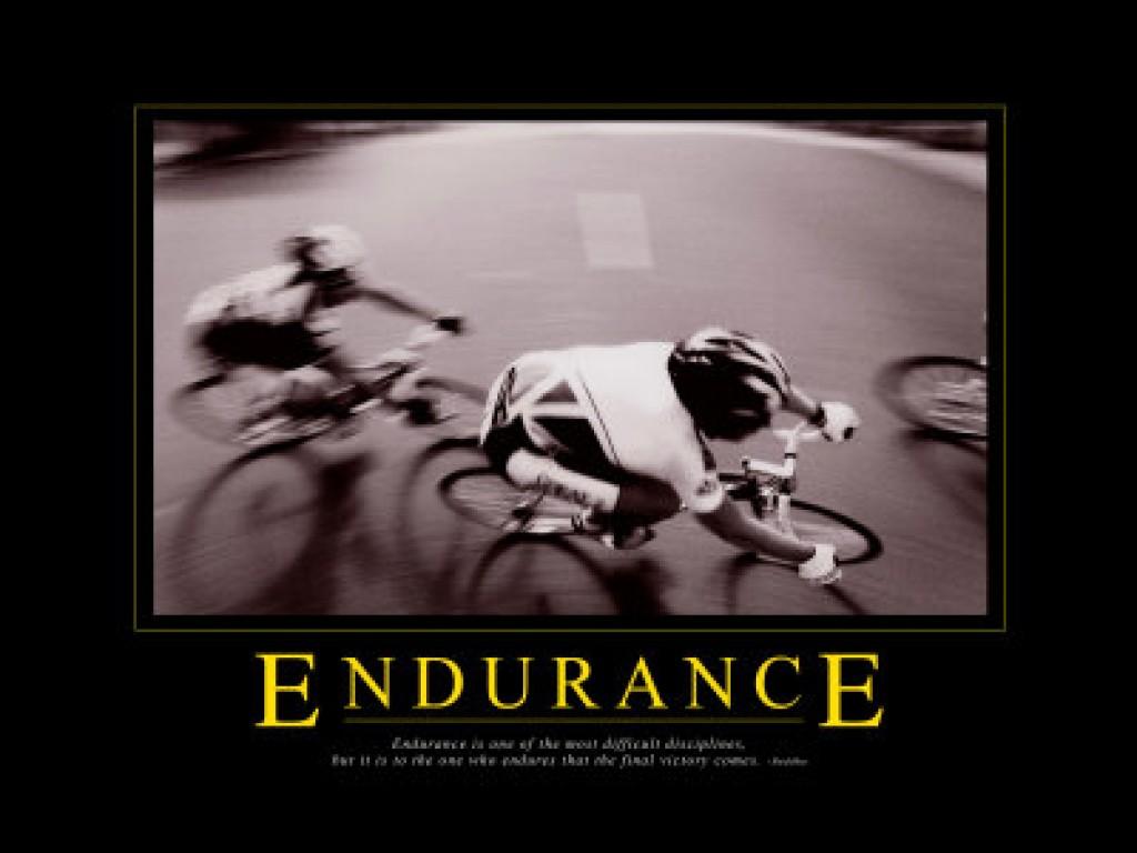 Endurance quote #3
