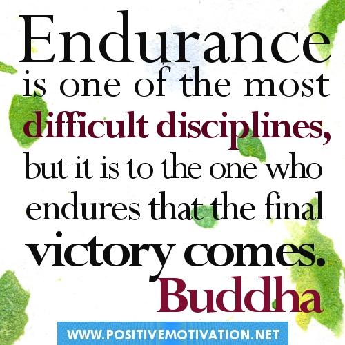 Endurance quote #2