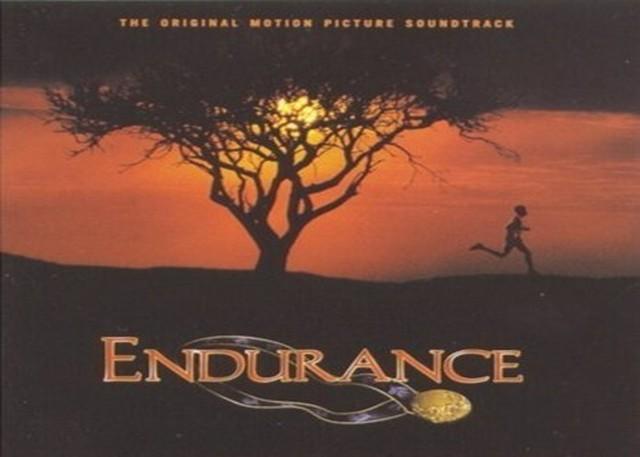 Endurance quote #8