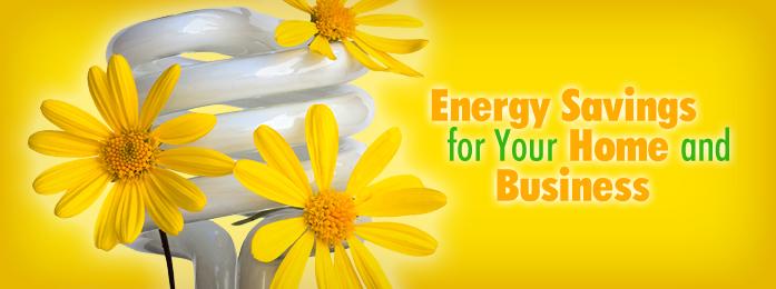 Energy Efficiency quote #2