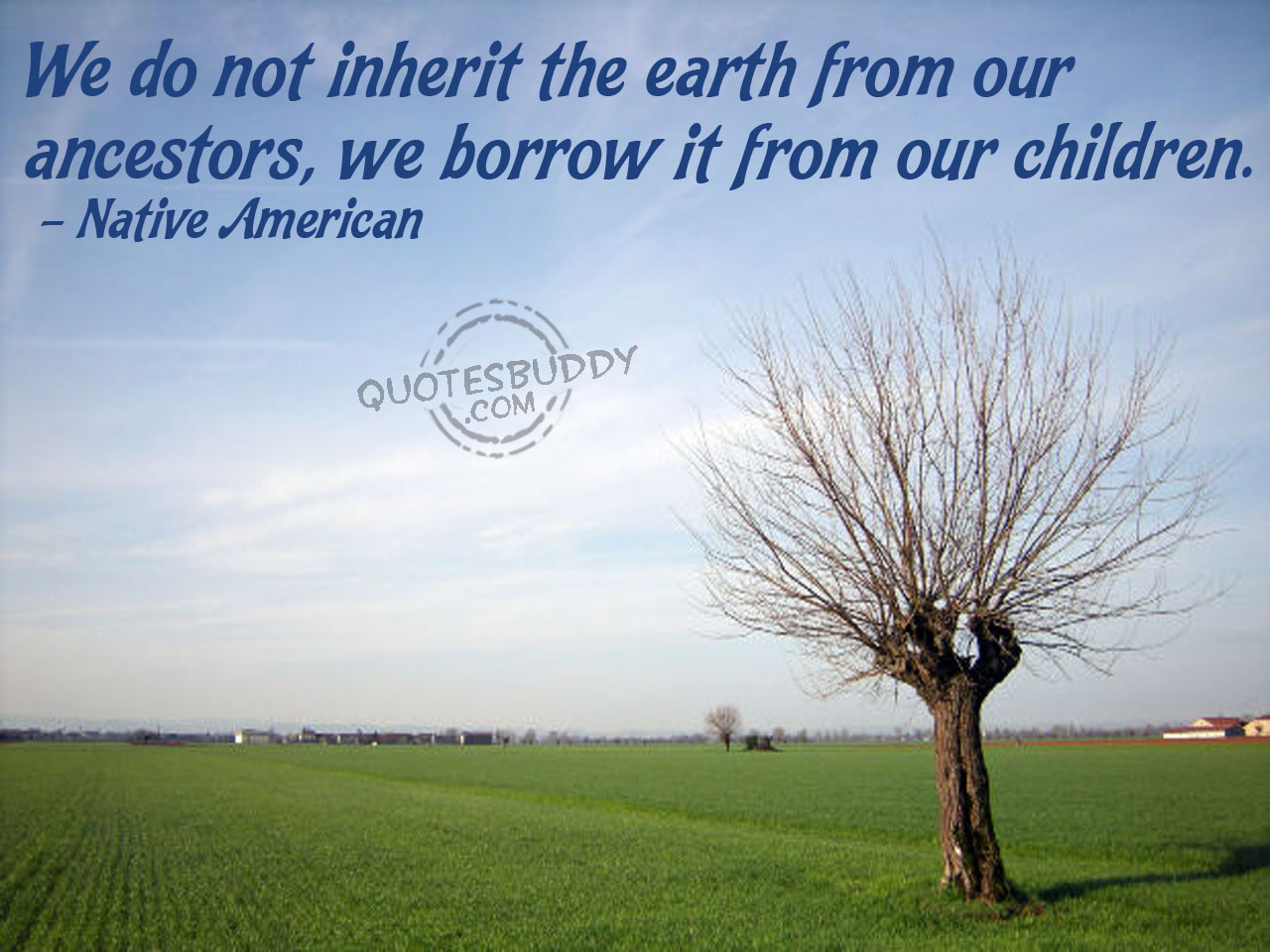 Environmental quote #3