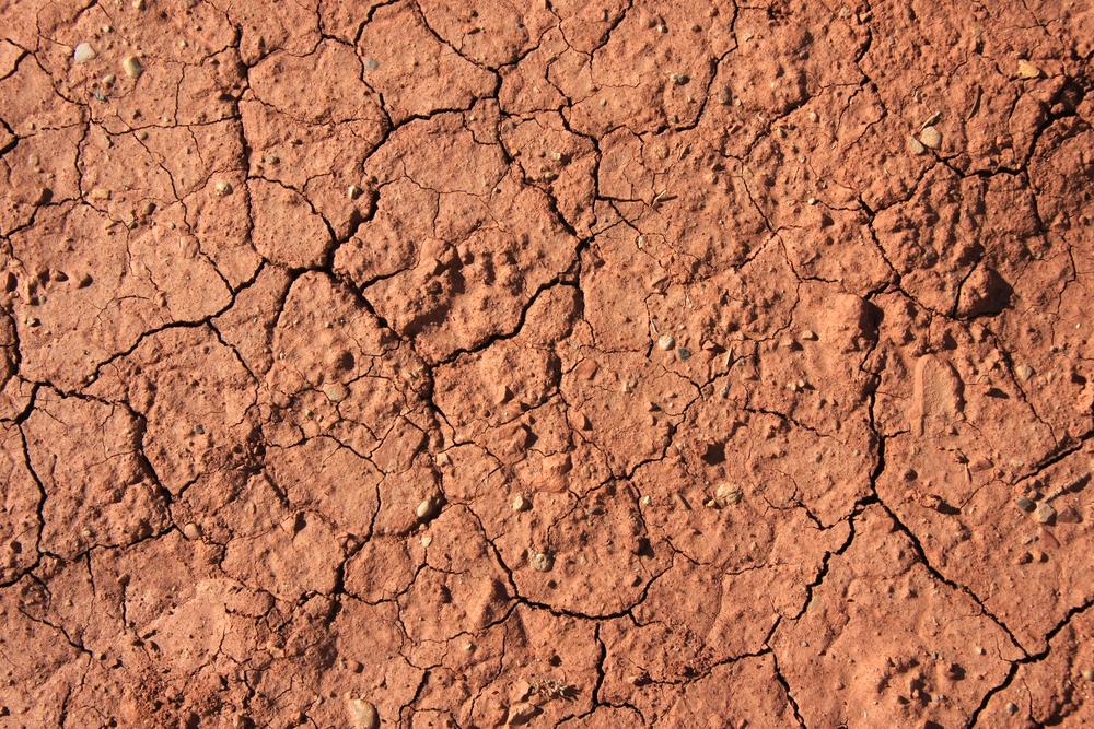 Erosion quote #2