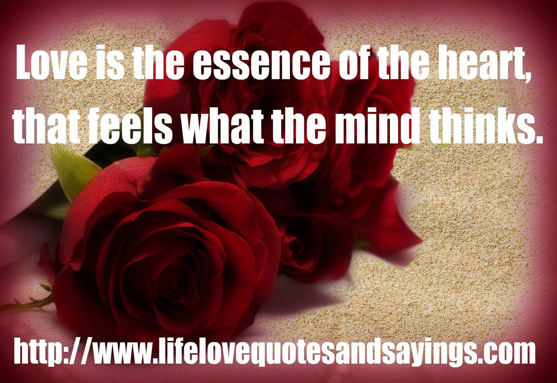 Essence quote #1