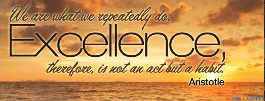 Excellence quote #4