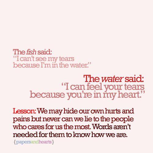 Fish quote #4