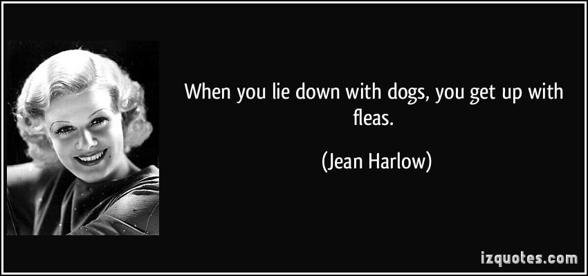 Fleas quote #1
