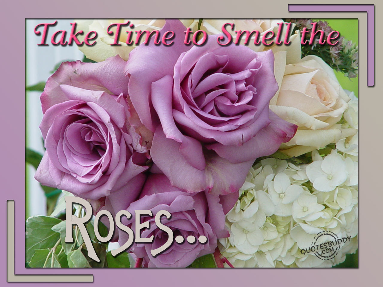 Flower quote #4