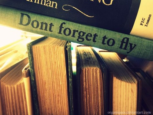 Fly quote #4