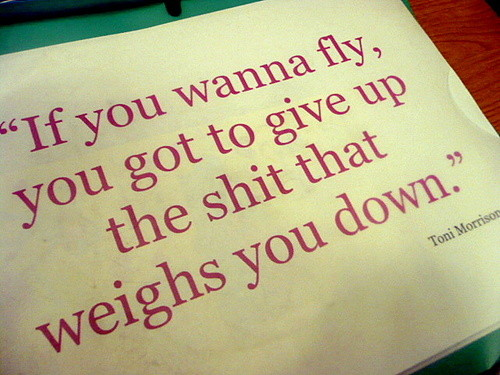 Fly quote #6