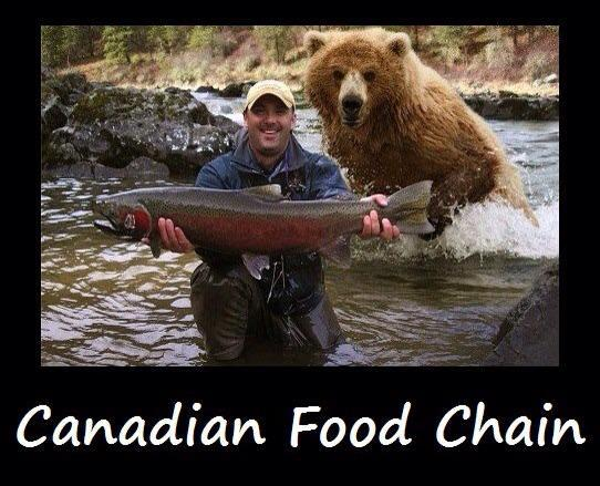 Food Chain quote