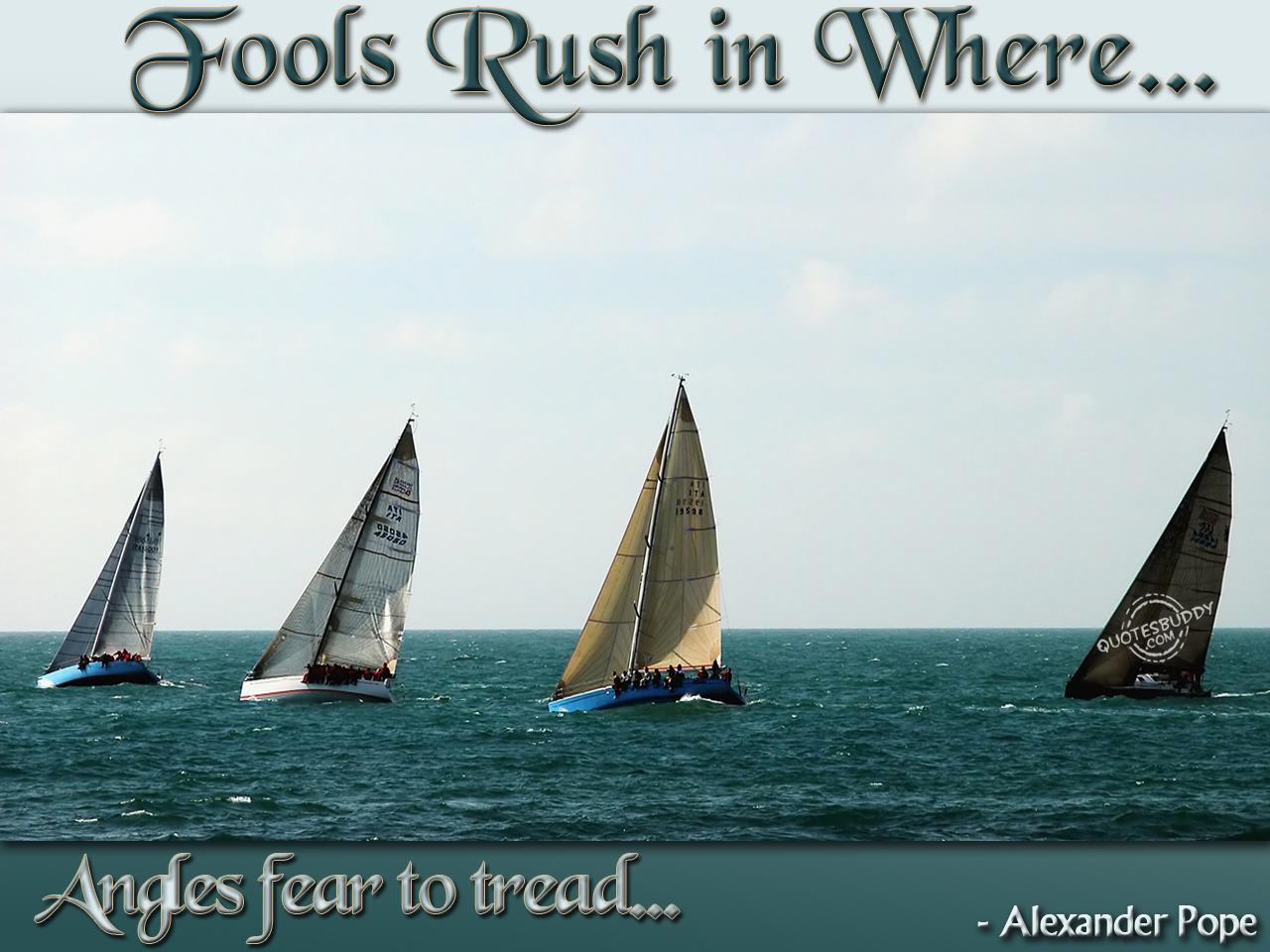 Fools quote #2