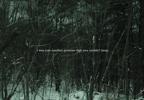Forest quote #7