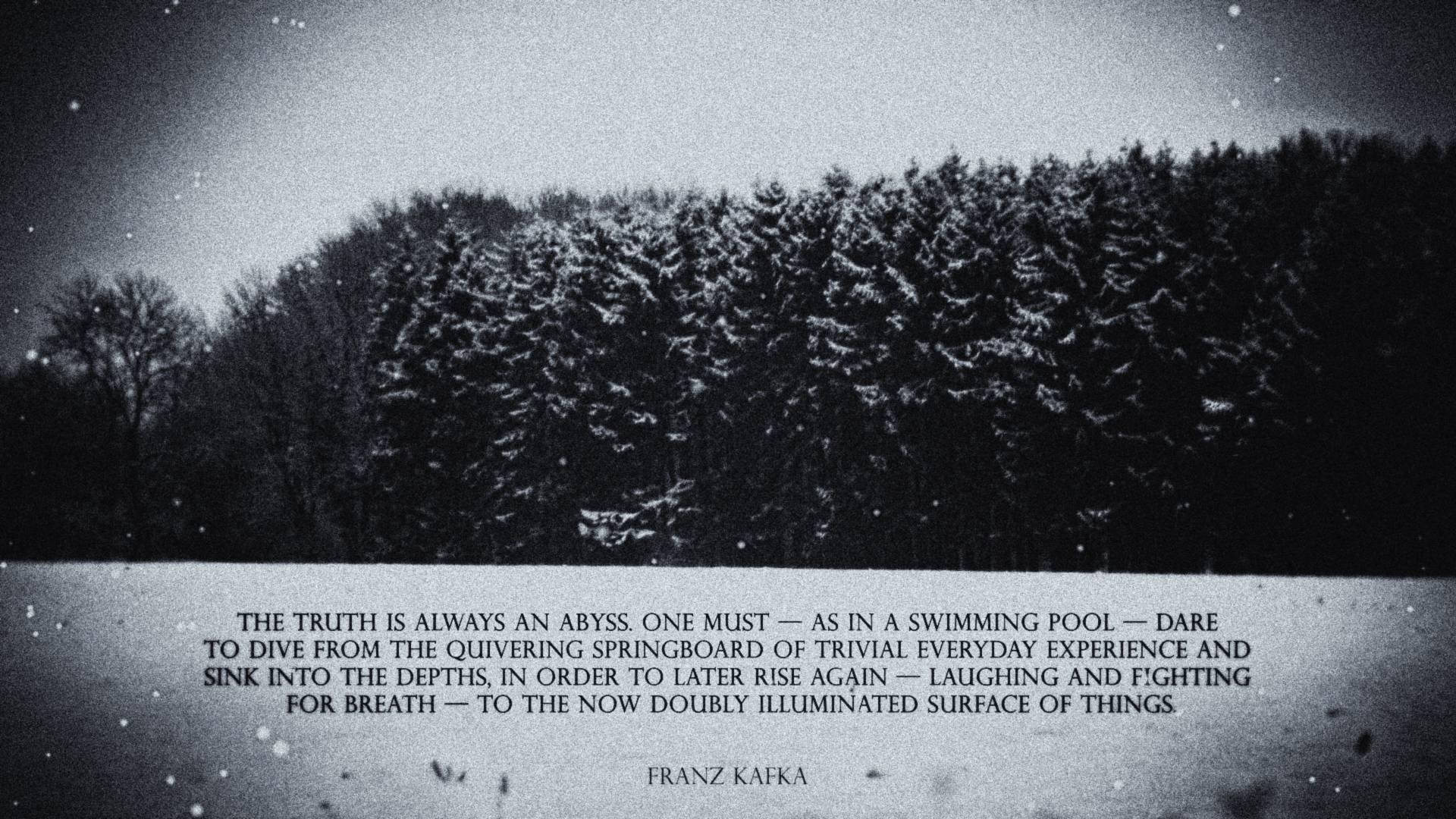 Franz Kafka's quote #6