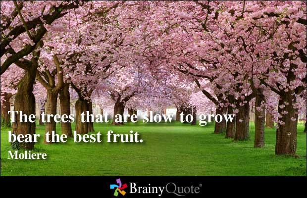Fruit quote #1
