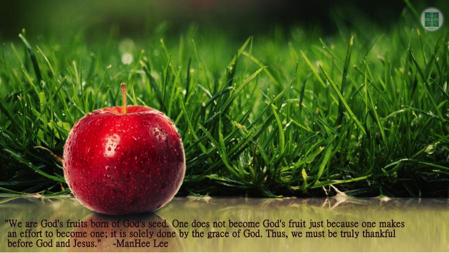 Fruit quote #5