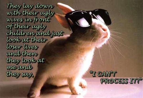 Furry quote #2