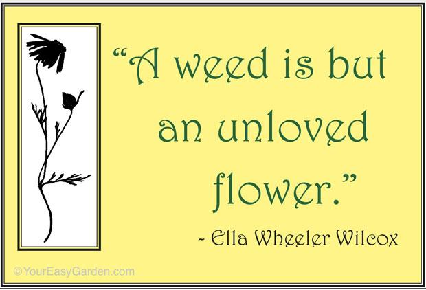 Garden quote #6