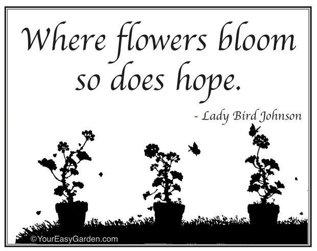 Gardening quote #3