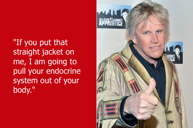 Gary Busey's quote #7