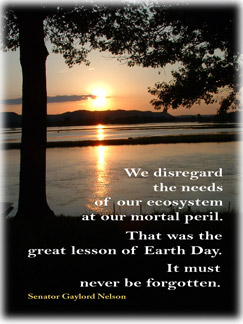 Gaylord Nelson's quote #8