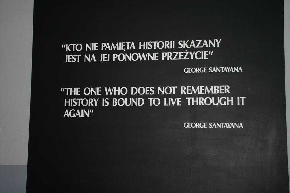 George Santayana's quote #5