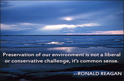 Global Warming quote #2