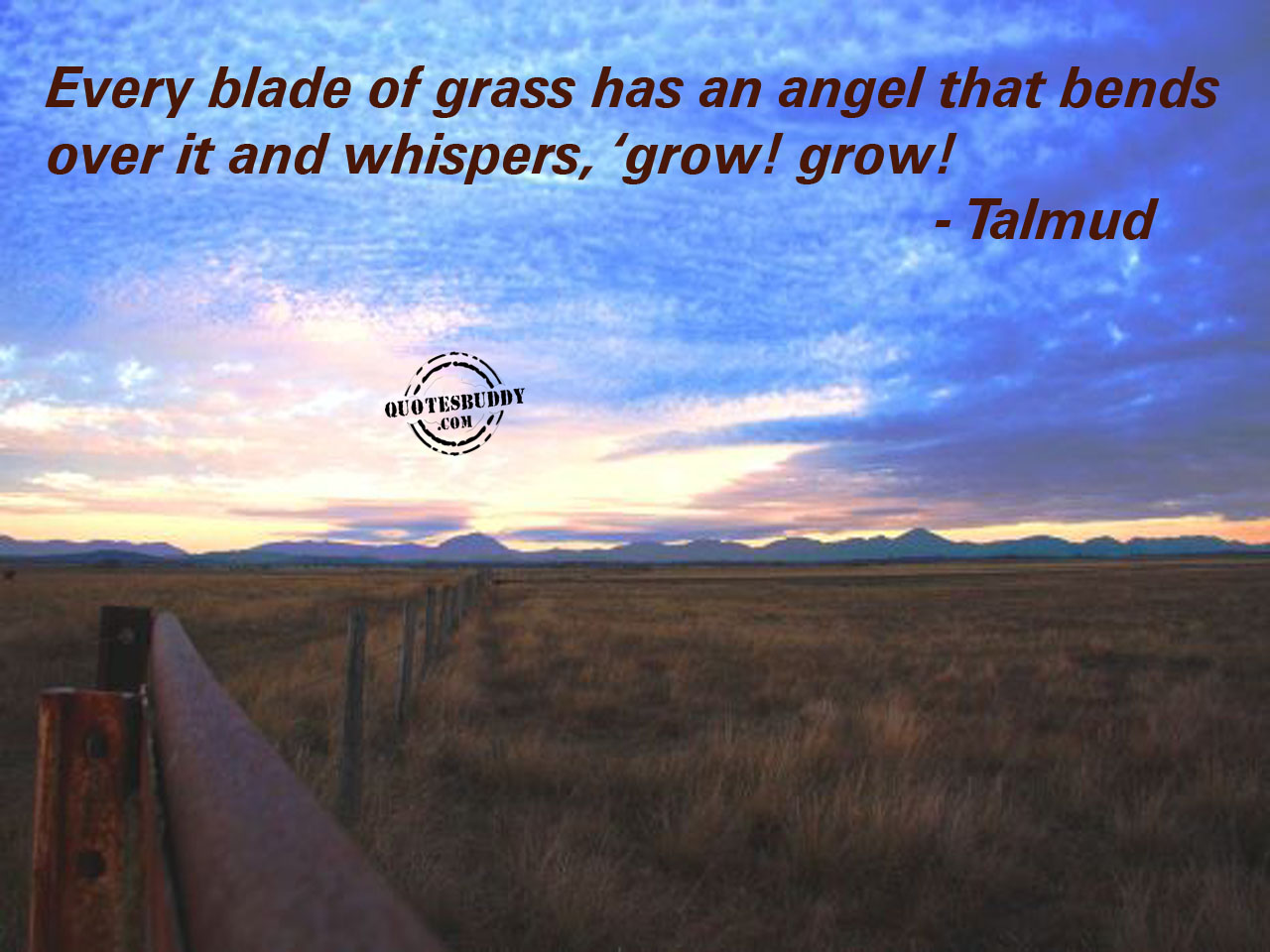 Grass quote #2