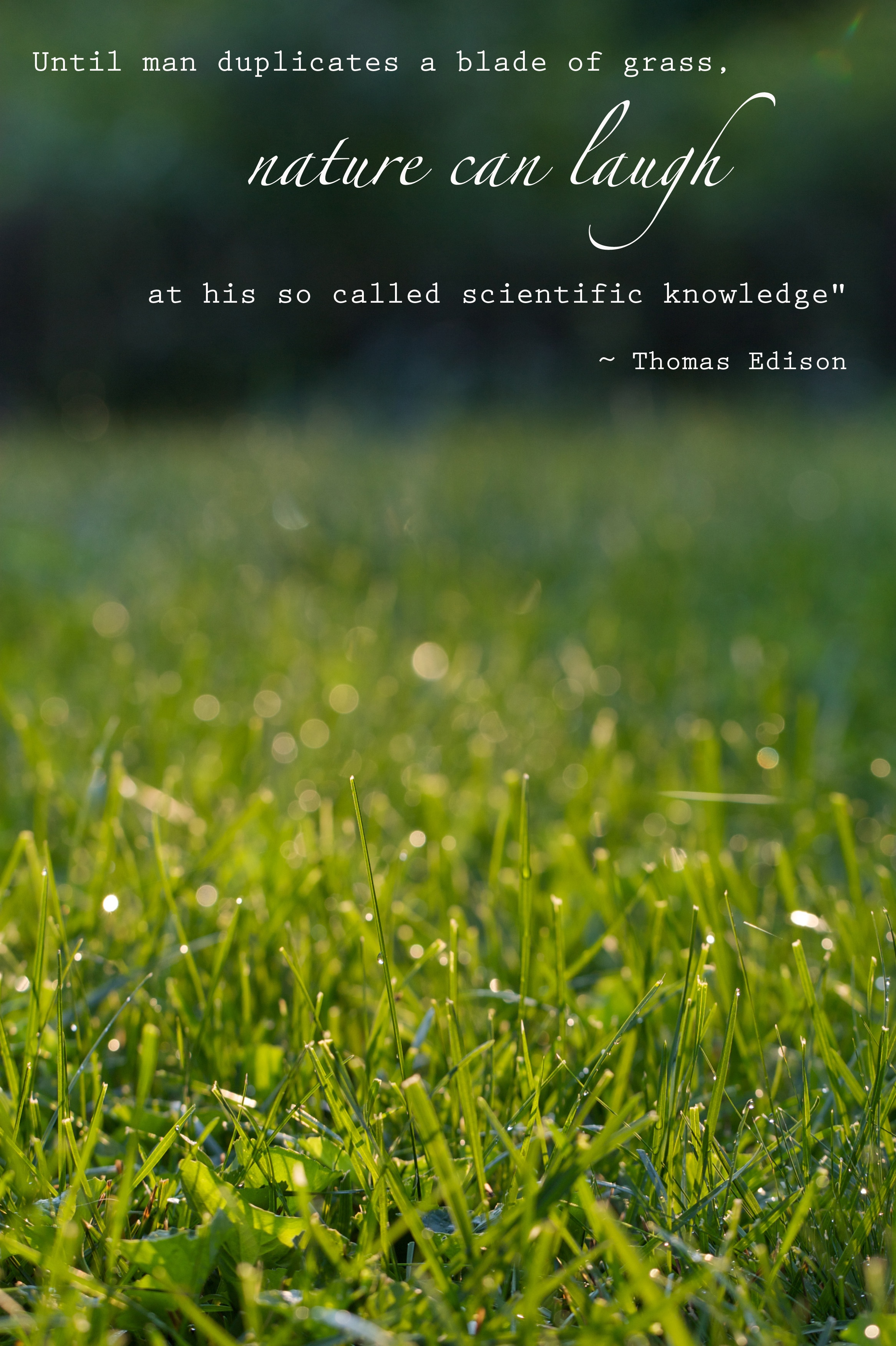 Grass quote #7