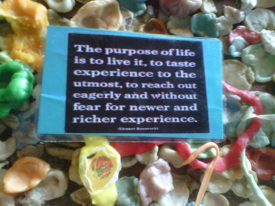 Gum quote #1