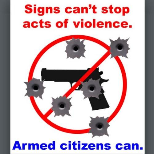 Gun quote #1