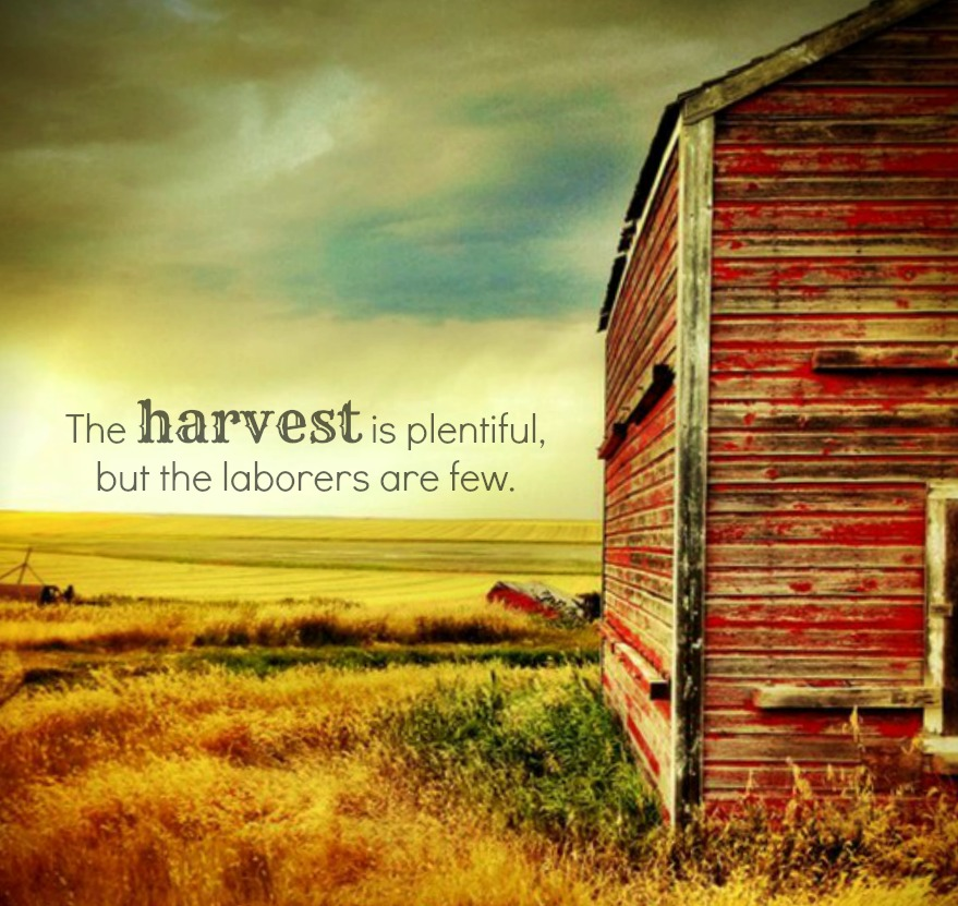 Harvest quote #1