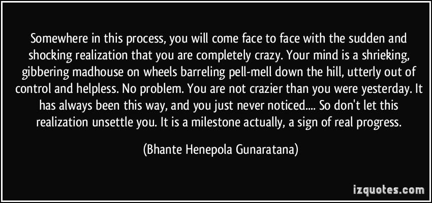 Henepola Gunaratana's quote #2