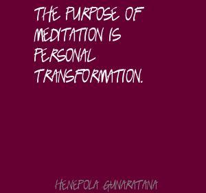 Henepola Gunaratana's quote #3