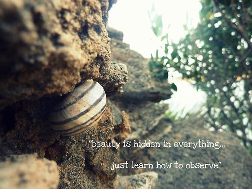 Hidden quote #3