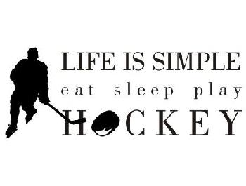 Hockey quote #6