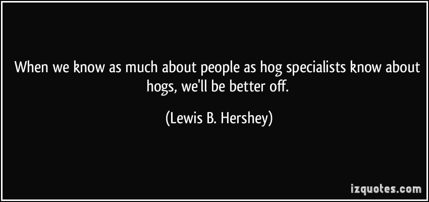 Hog quote #2