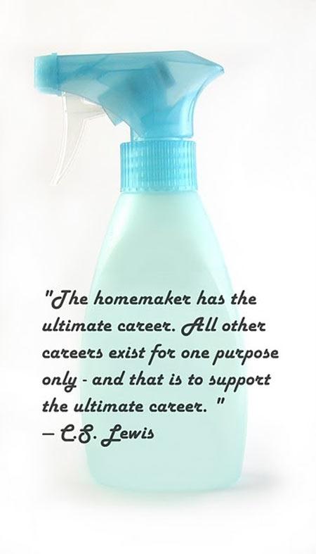 Homemaker quote #1