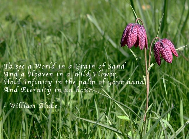 Honour quote #6