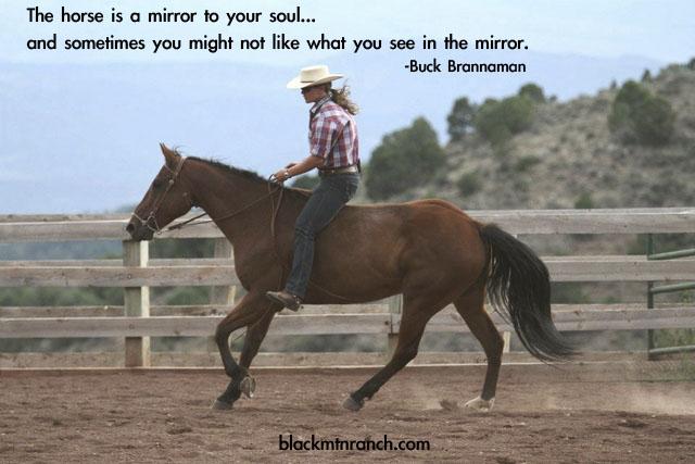Horse quote #5