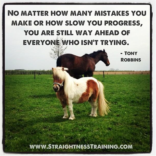 Horse quote #6