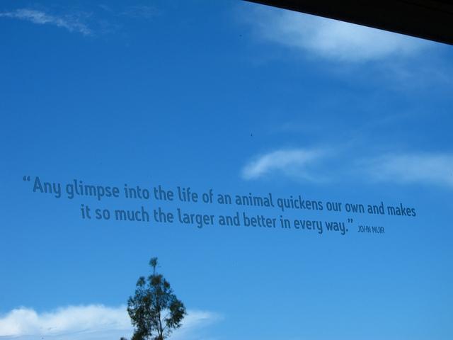 Hospital quote #4