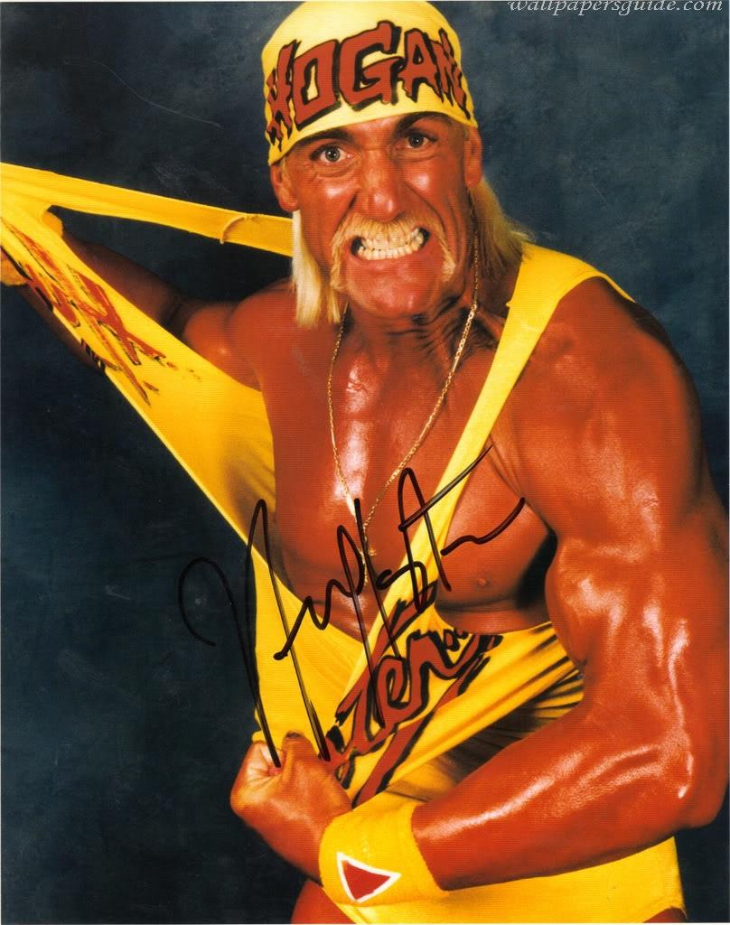 Hulk hogan 80-9653