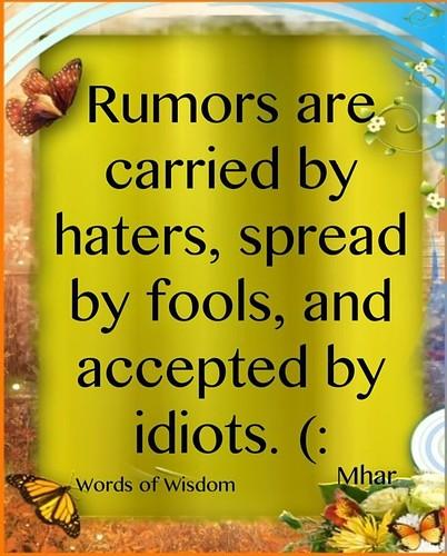 Idiots quote #4