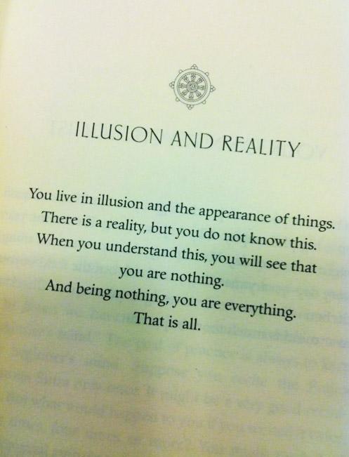 Illusion quote #4